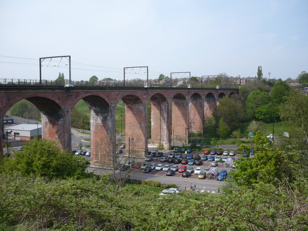 Railway Viaduct, Chester le Street, May 2008