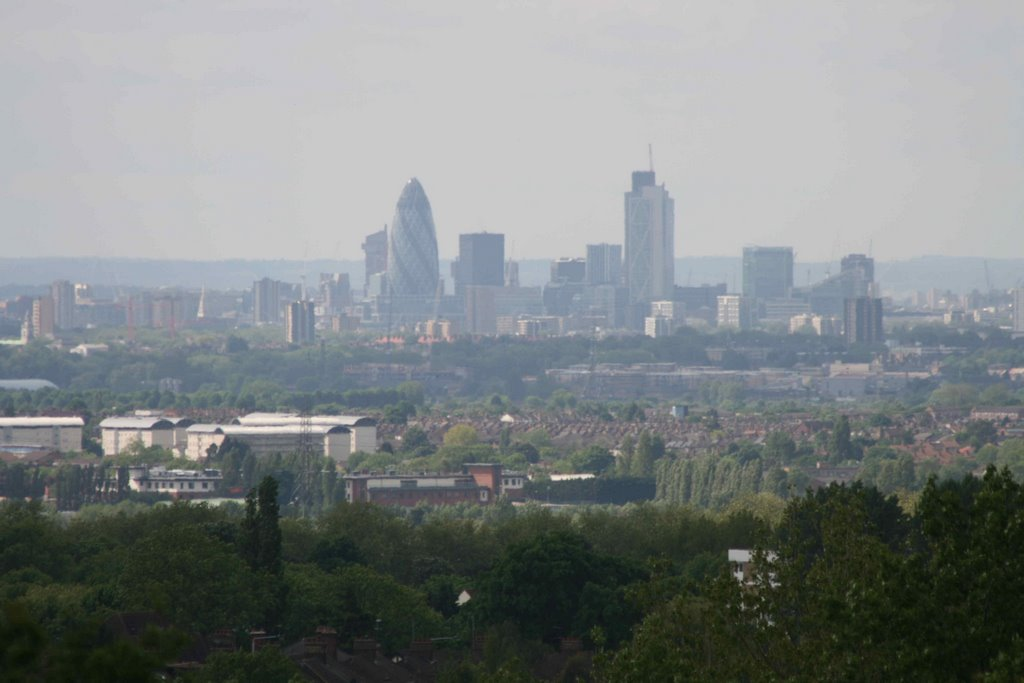 The city from Pole Hill