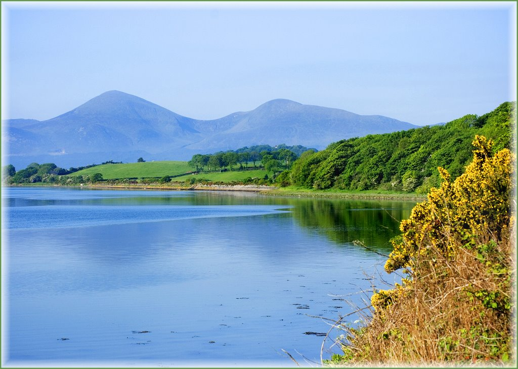 Mourne Mountains from Dundrum Inner Bay near Ardilea