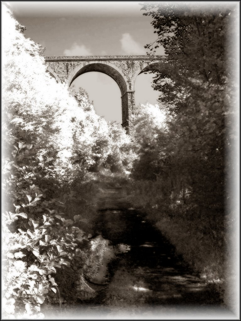 The abandoned Bessbrook - Newry tramline runs under Irelands highest railway bridge, the Craigmore viaduct