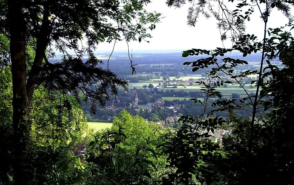 Brockham viewed from Box Hill