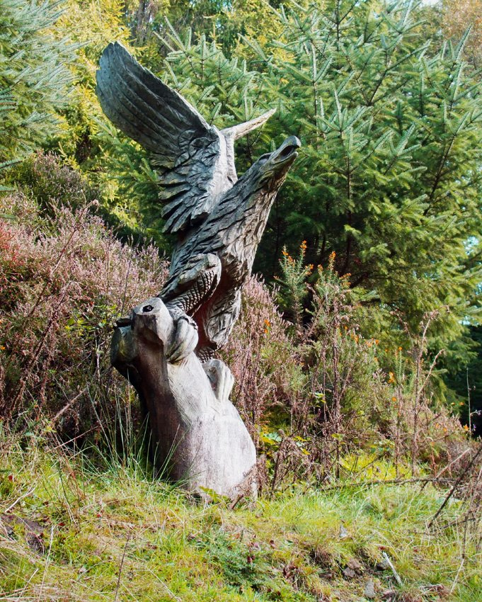 Eagle (Wooden Sculpture)