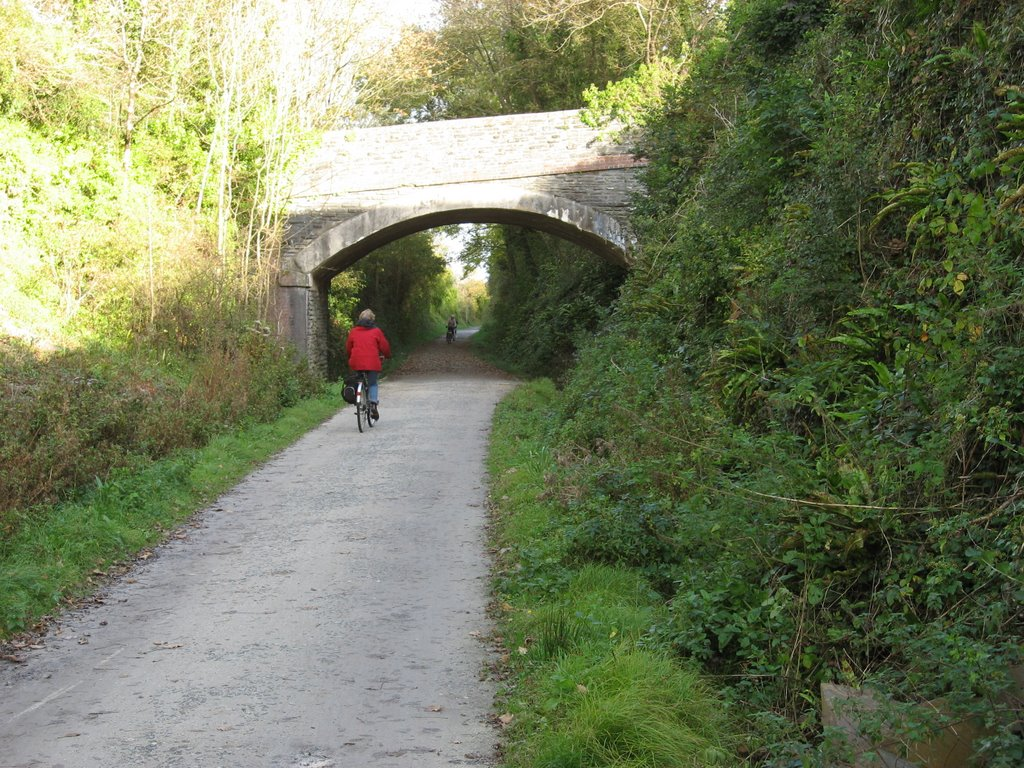 Bridge, Camel Trail.