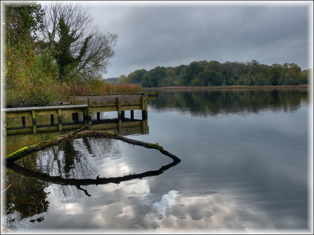 Lurgan Park Lake