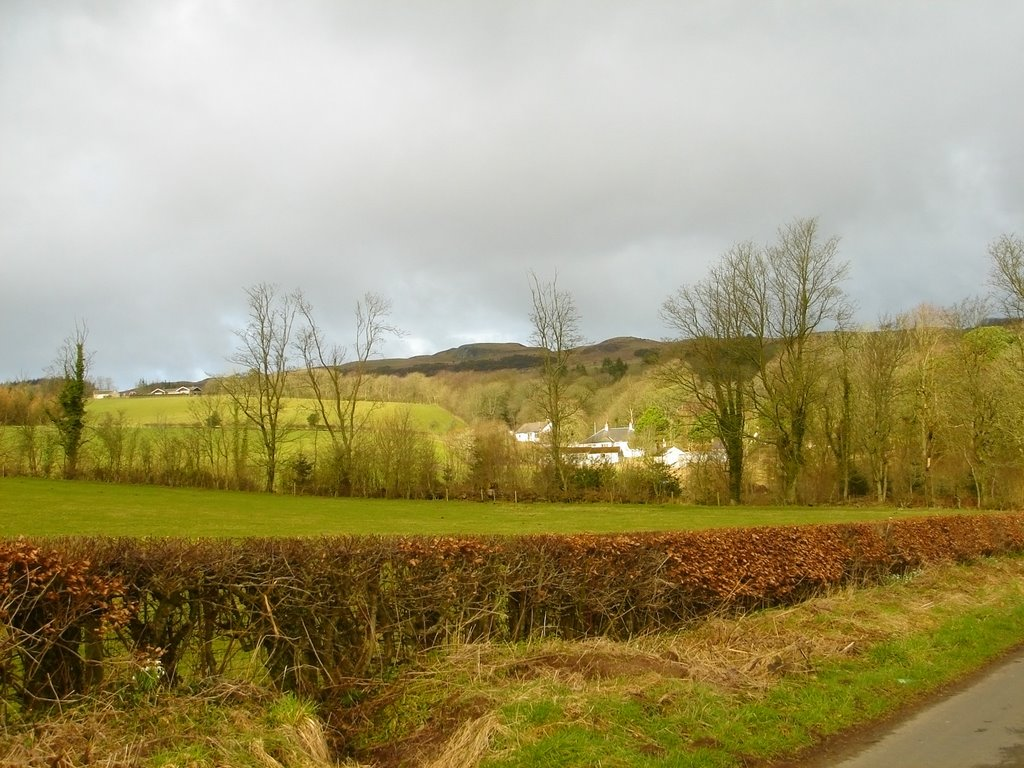 Road to the Carrick Hills