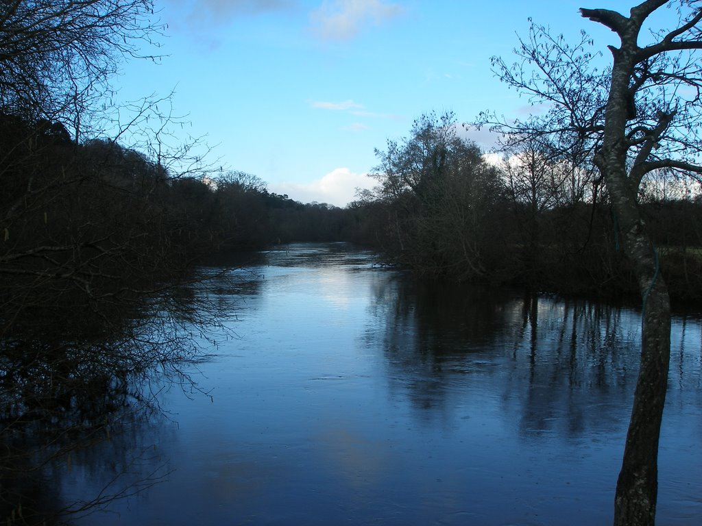 river dart just above totnes weir