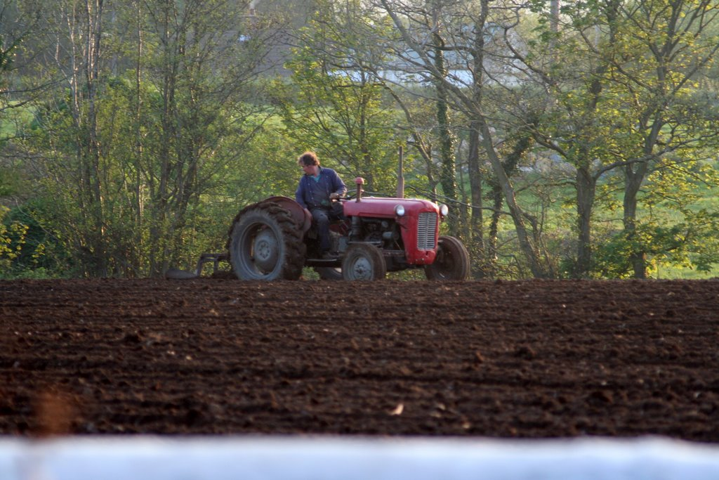 Gracefield, ploughing