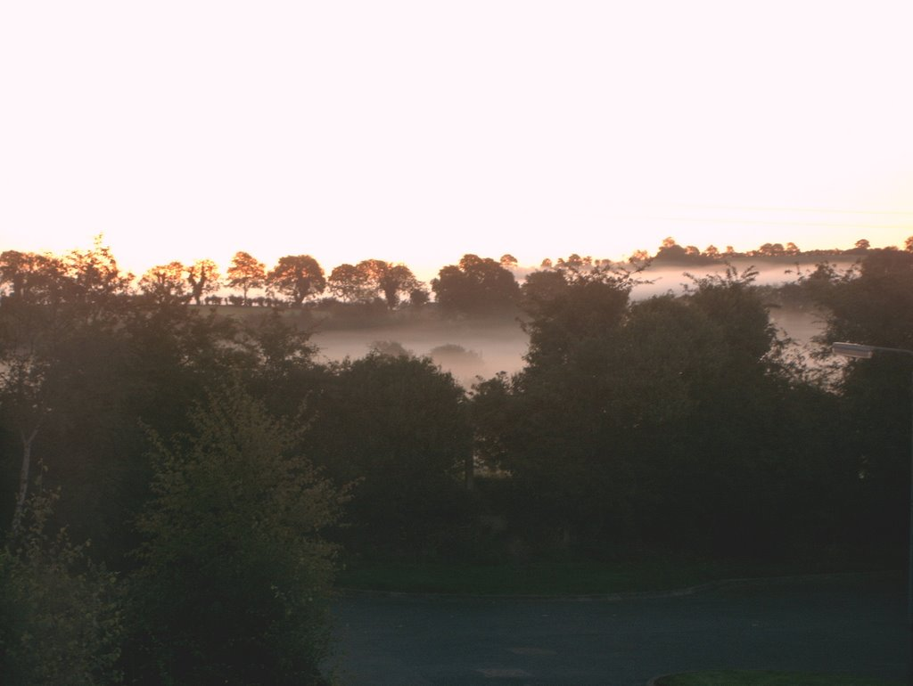 Mist on an Autumn Morning