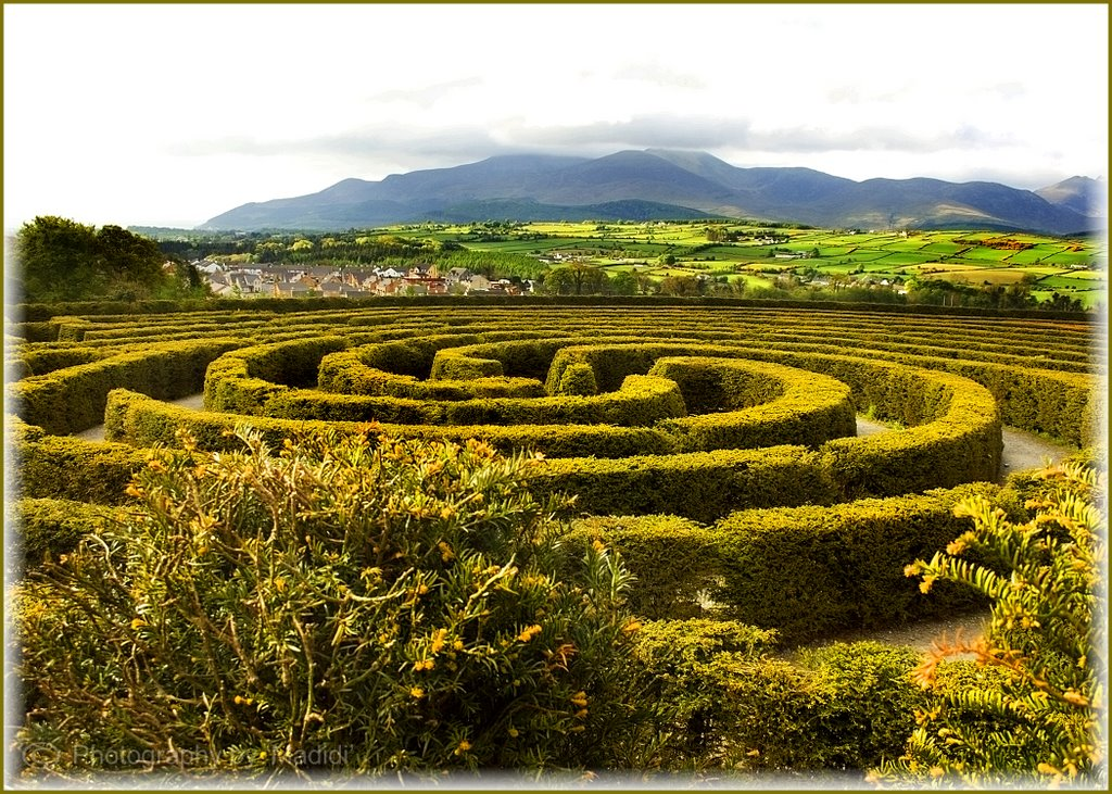 Peace Maze at Castlewellan Forest Park