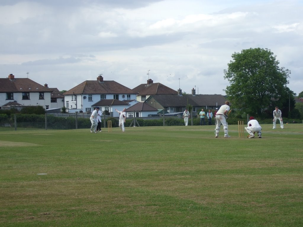 More Cricket on the Green
