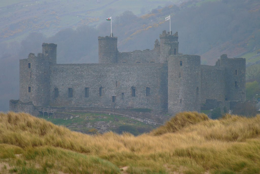 Harlech Castle from beach