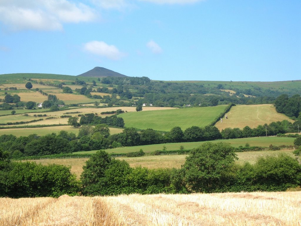 # SUGAR LOAF MOUNTAIN, NEAR ABERGAVENNY.
