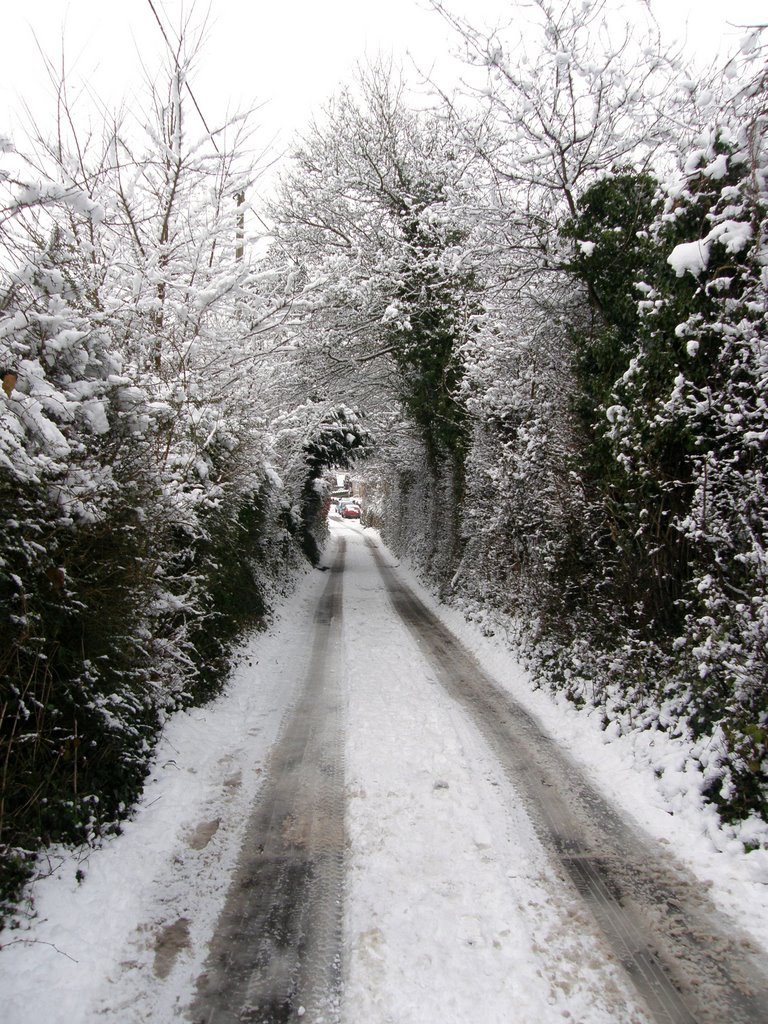 Park Road In The Snow