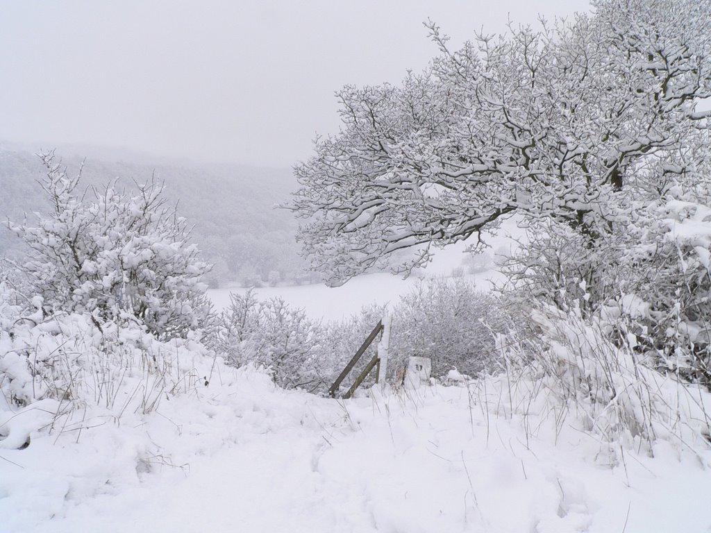 winter in the coxley valley by claire colley