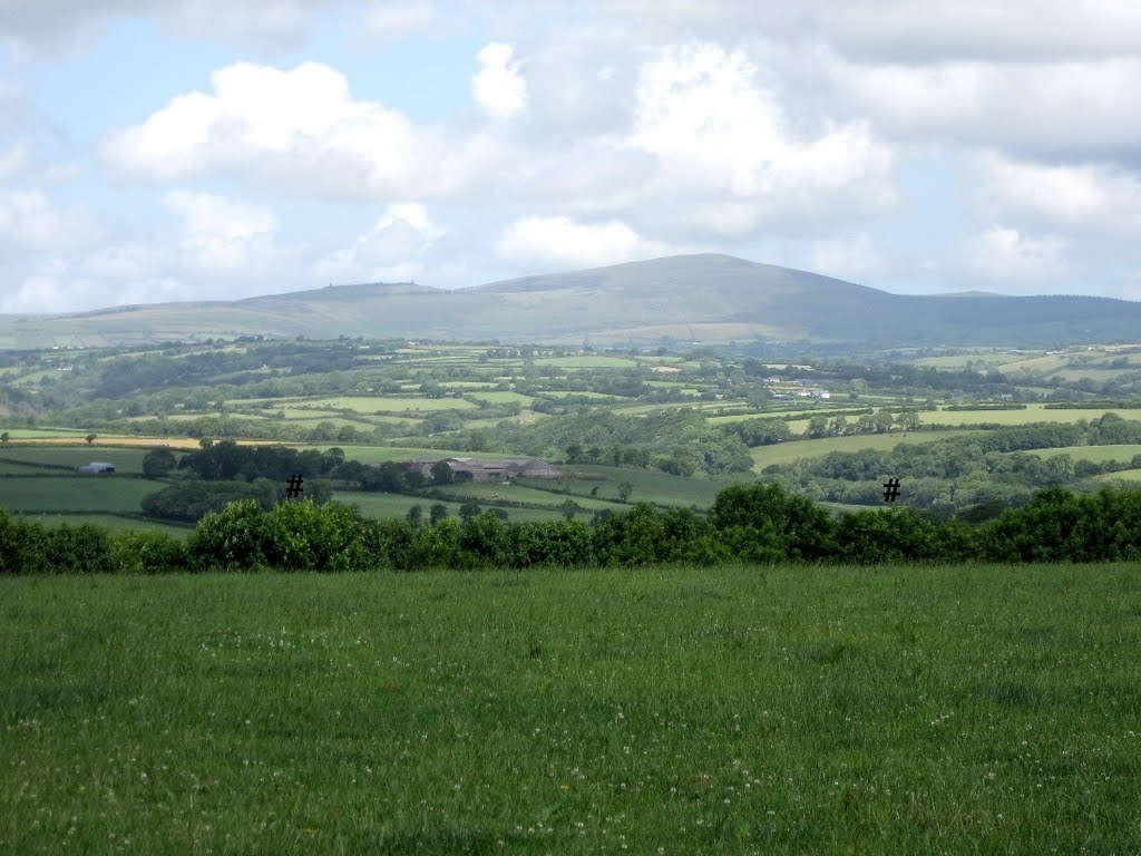 # THE PRESELI MOUNTAINS FROM NEAR BETHESDA.
