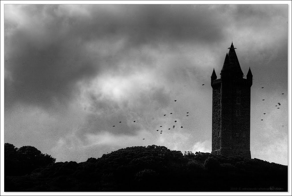 Scrabo Tower / 2010