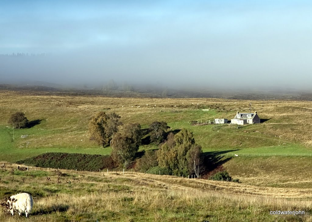 Croft on Dava Moor in mist and sunshine