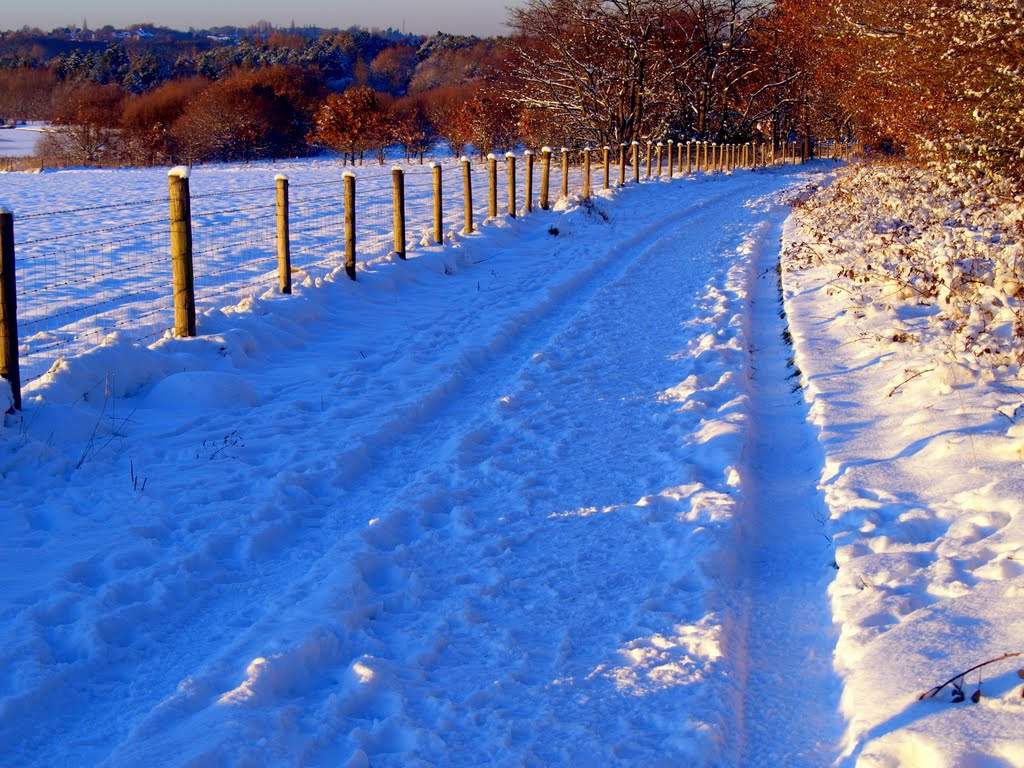 Sandwell Valley - Snow/Path