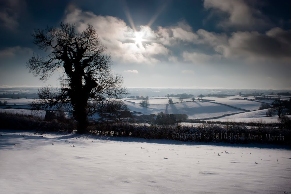 Somerset in the snow