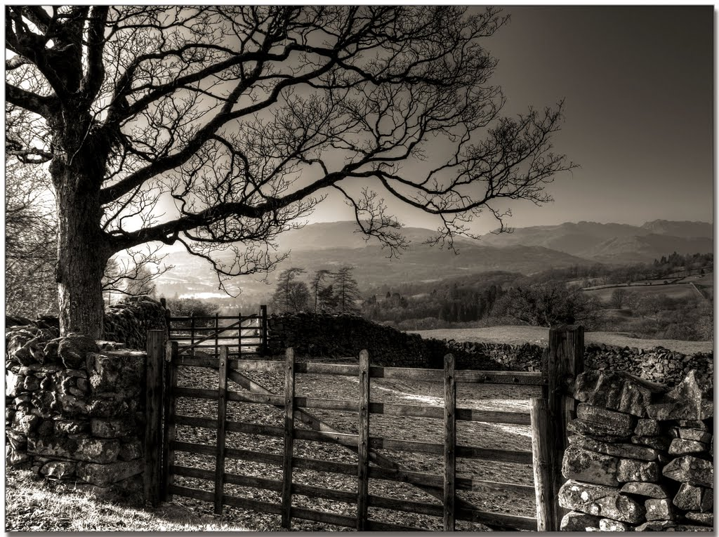 A Lake District scene