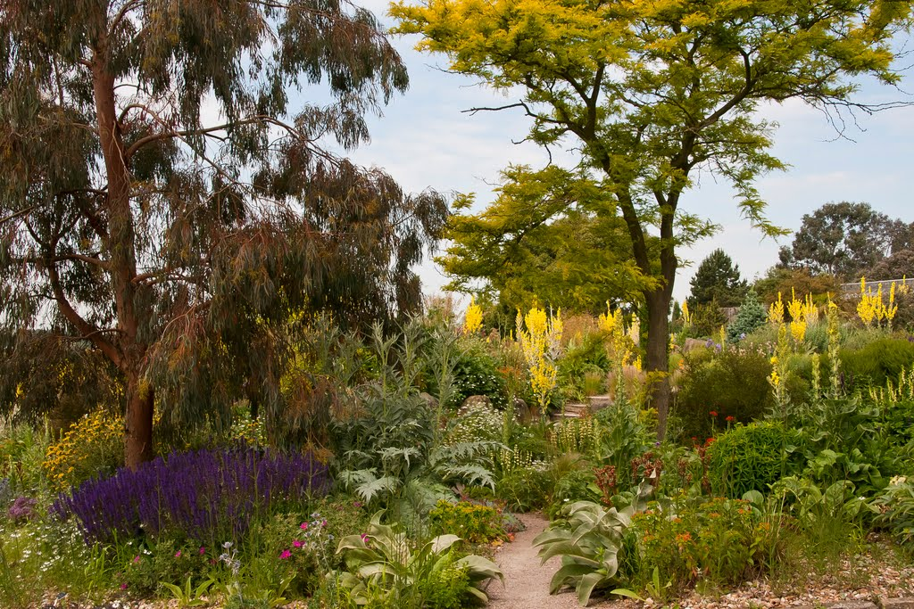 RHS Gardens at Hyde Hall (Woodham Ferrers)