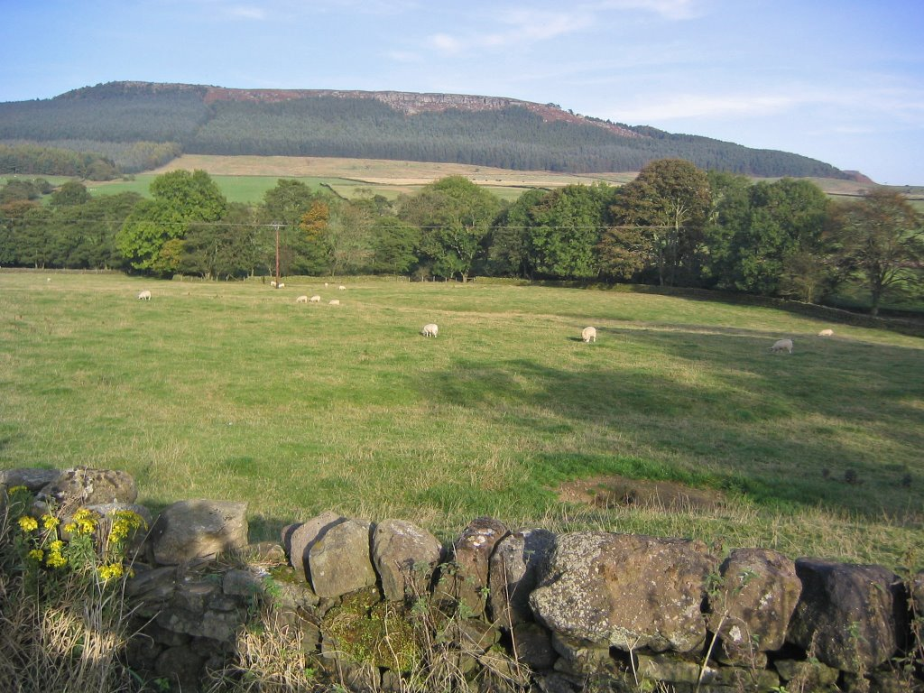 Countryside North of Skipton (1)