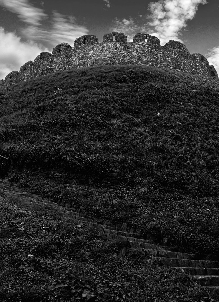 Totnes Castle Revisited in Mono