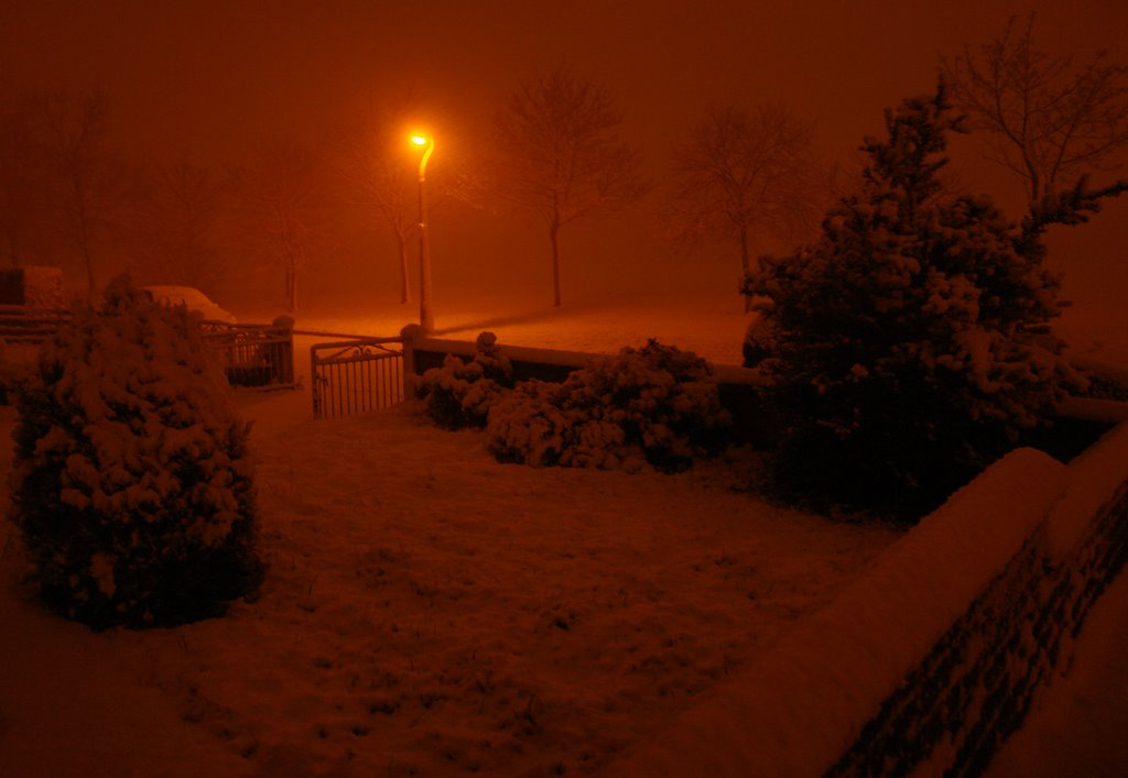 Winter Wonderland - Snow at Night in Finaghy