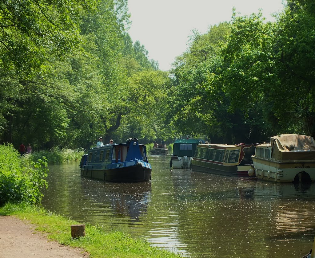 Houseboats on Pyrford Lock Surrey England