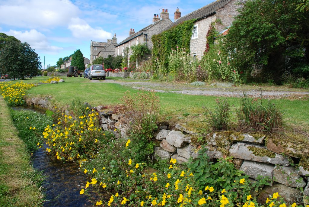 Bellerby, Richmondshire, North Yorkshire - Stream through village