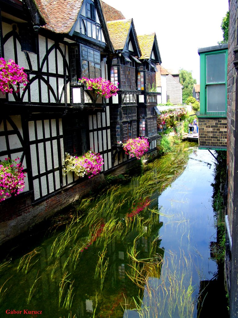 House and water... (Canterbury, UK)