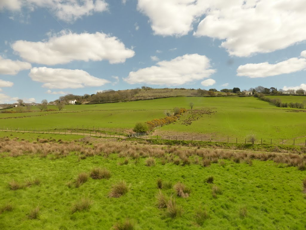 View of Farm Land From Train, Wales