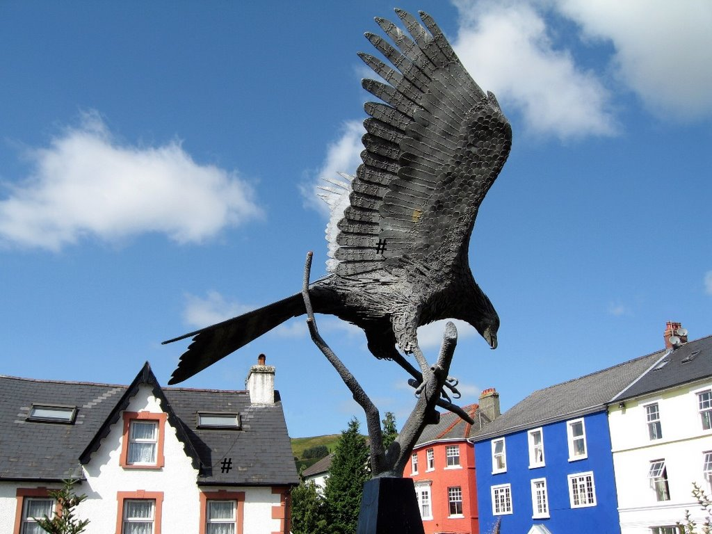# LLANWRTYD WELLS - The Red Kite.